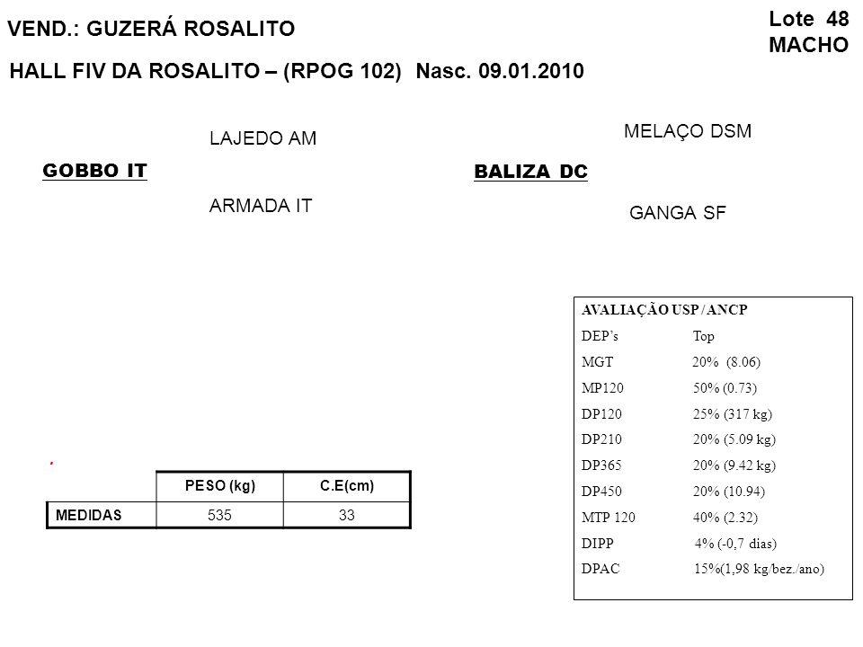 HALL FIV DA ROSALITO – (RPOG 102) Nasc. 09.01.2010