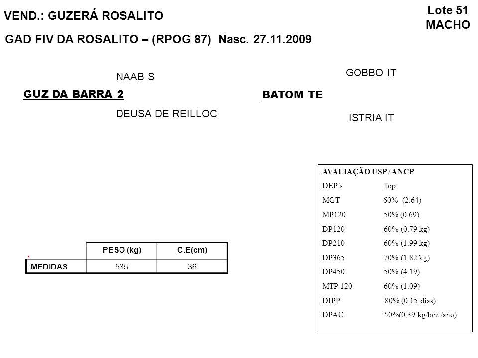 GAD FIV DA ROSALITO – (RPOG 87) Nasc. 27.11.2009