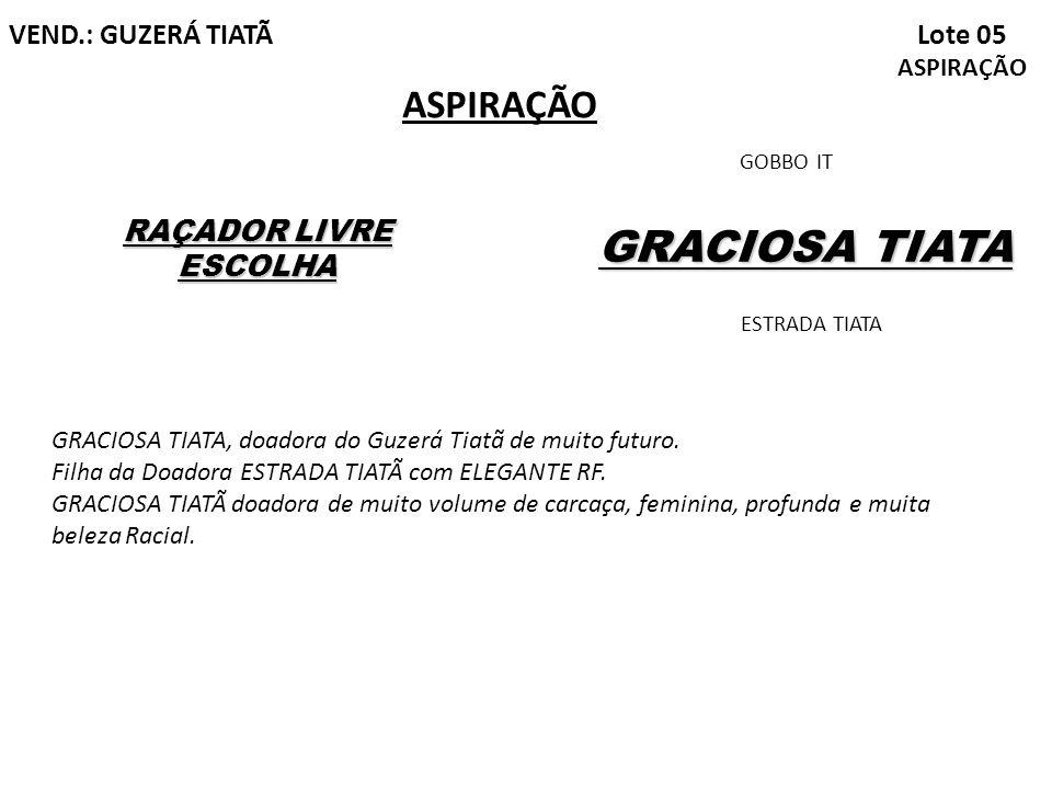 GRACIOSA TIATA ASPIRAÇÃO Lote 05 ASPIRAÇÃO VEND.: GUZERÁ TIATÃ
