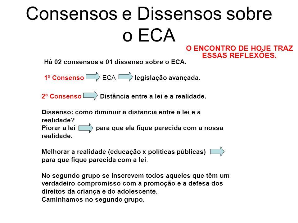 Consensos e Dissensos sobre o ECA