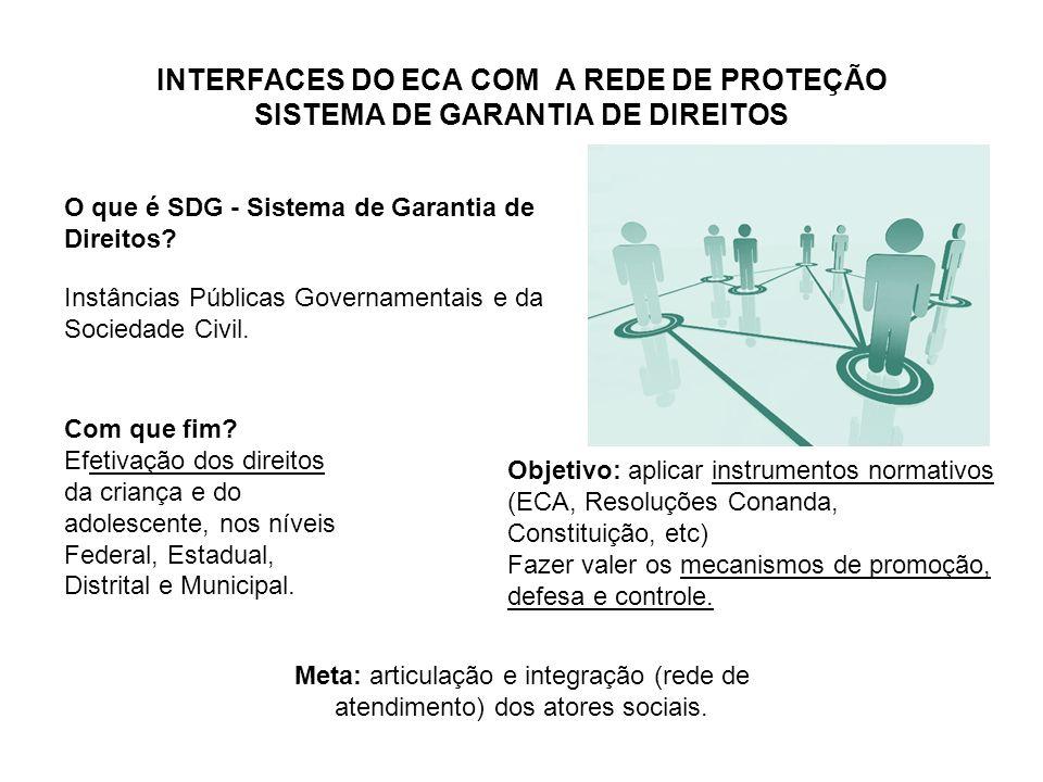 INTERFACES DO ECA COM A REDE DE PROTEÇÃO SISTEMA DE GARANTIA DE DIREITOS