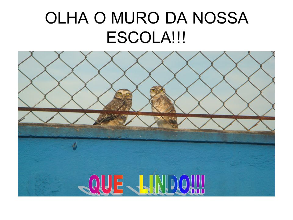 OLHA O MURO DA NOSSA ESCOLA!!!
