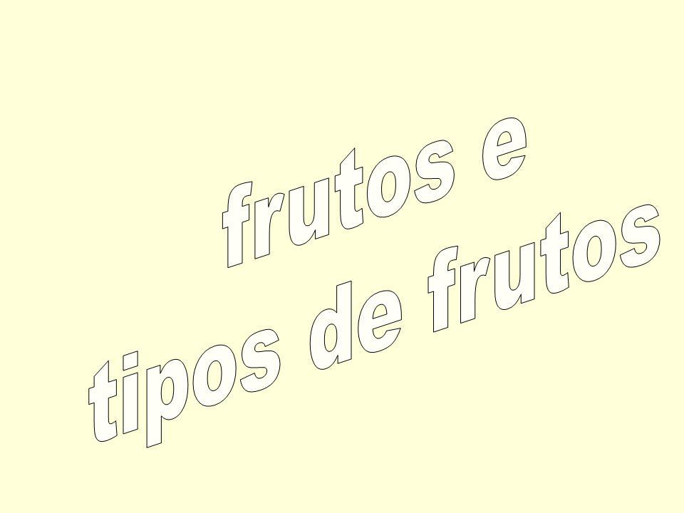 frutos e tipos de frutos