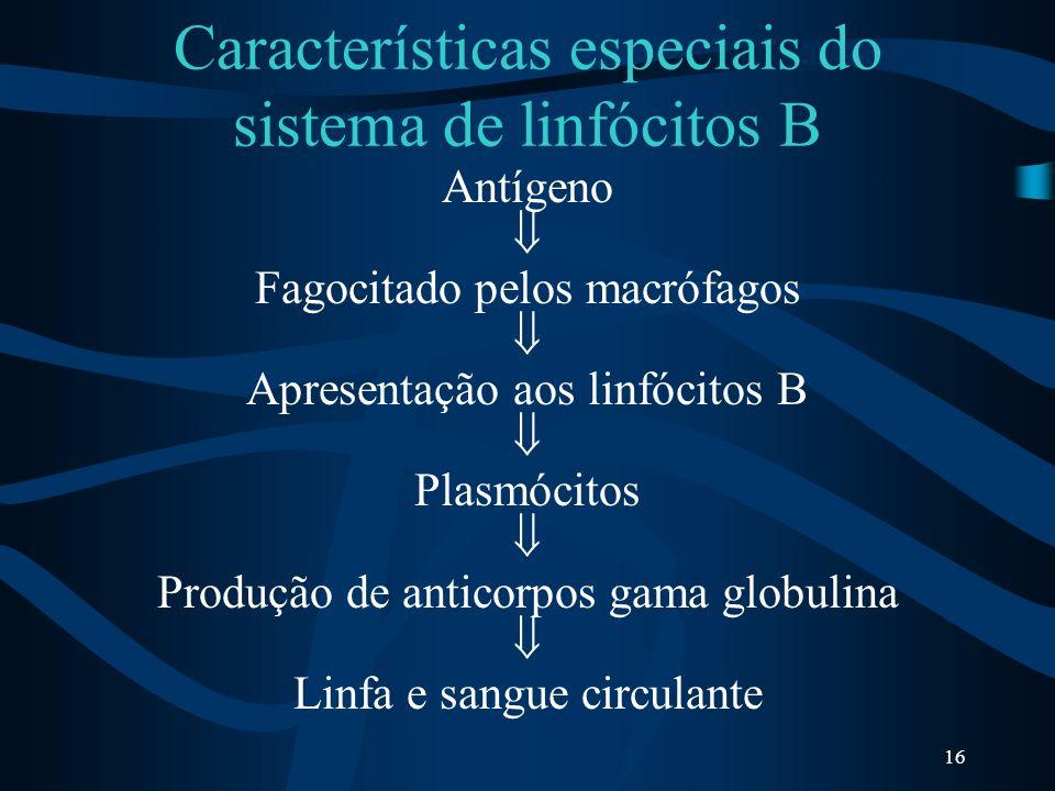 Características especiais do sistema de linfócitos B