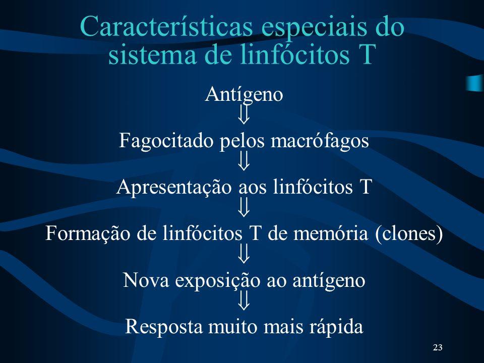 Características especiais do sistema de linfócitos T
