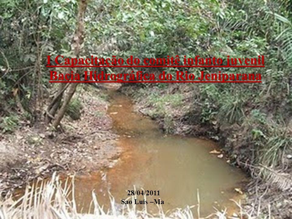 I Capacitação do comitê infanto juvenil Bacia Hidrográfica do Rio Jeniparana