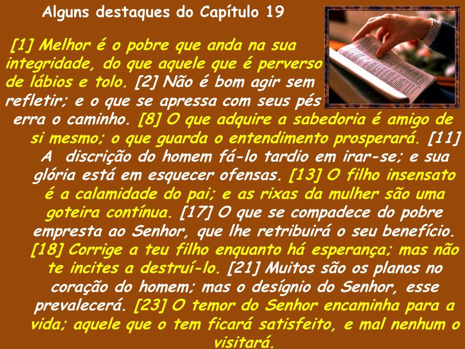 Alguns destaques do Capítulo 19