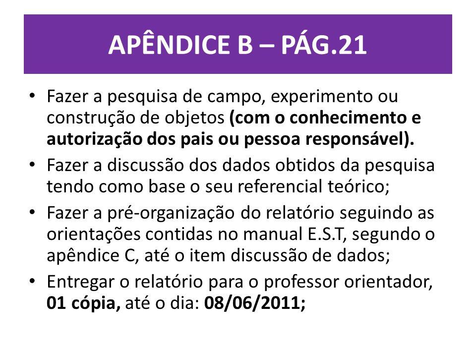 APÊNDICE B – PÁG.21