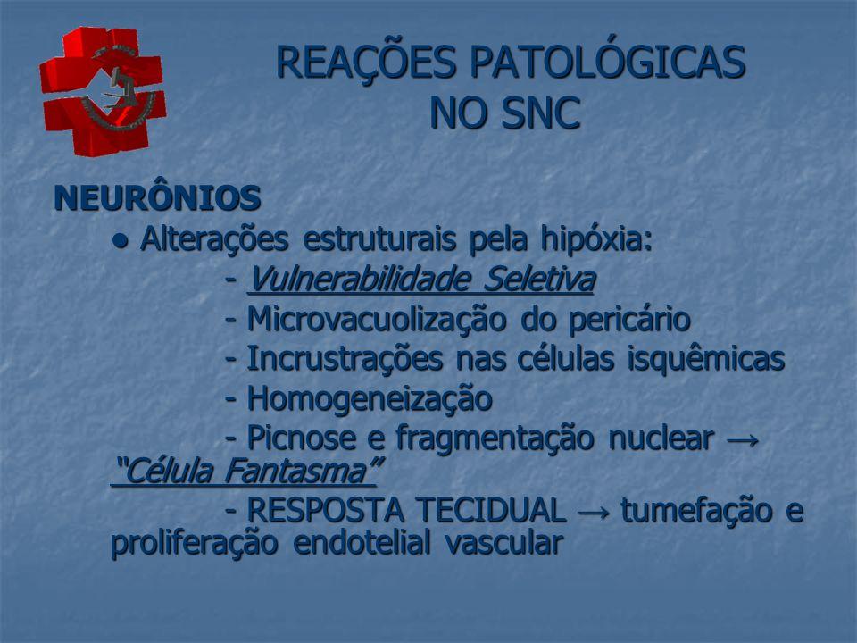REAÇÕES PATOLÓGICAS NO SNC