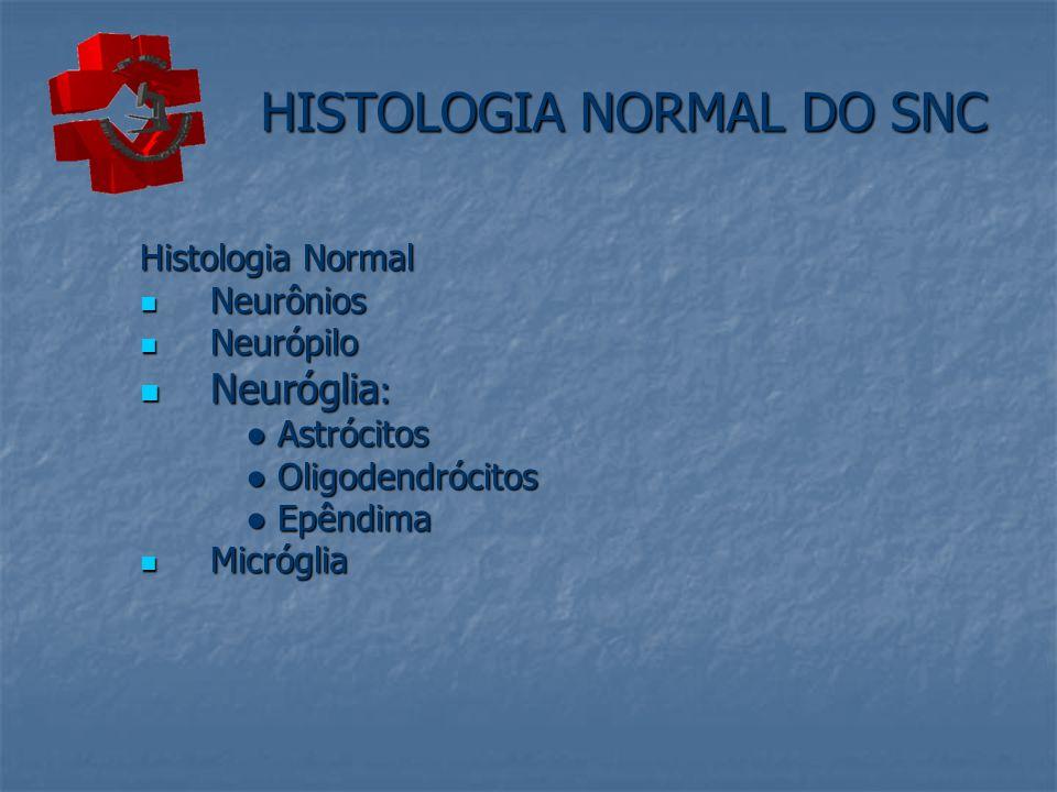 HISTOLOGIA NORMAL DO SNC