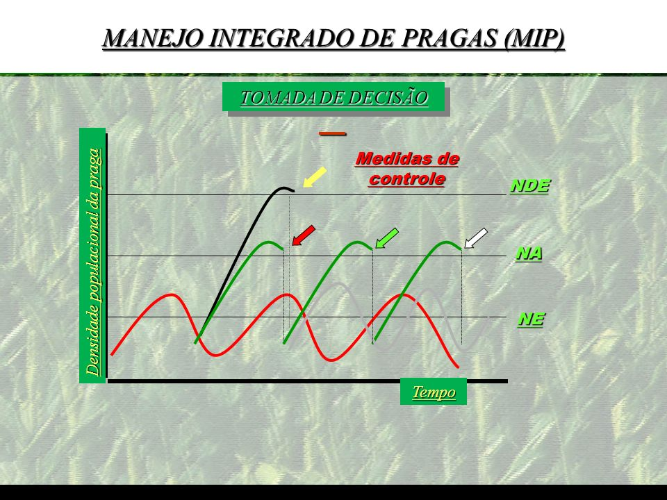 MANEJO INTEGRADO DE PRAGAS (MIP)