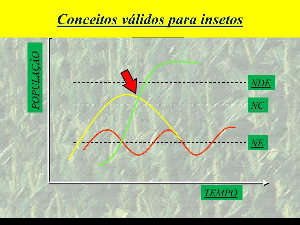 Conceitos válidos para insetos O Futuro do Agronegócio