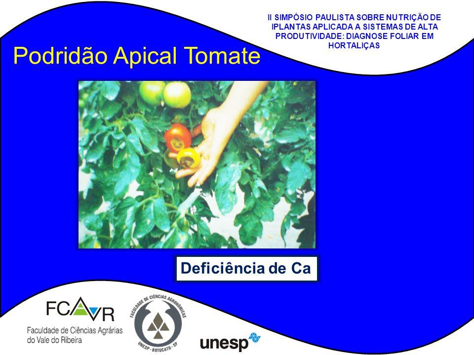 Podridão Apical Tomate