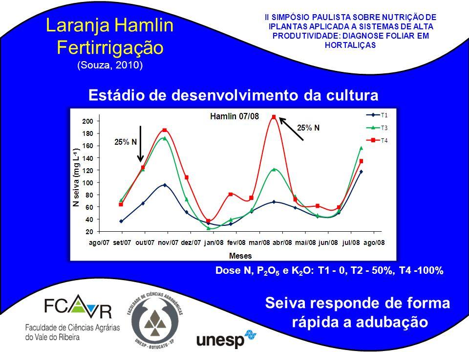 Laranja Hamlin Fertirrigação (Souza, 2010)