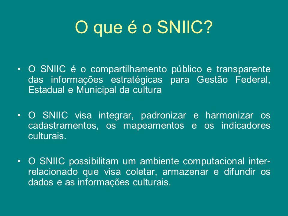 O que é o SNIIC
