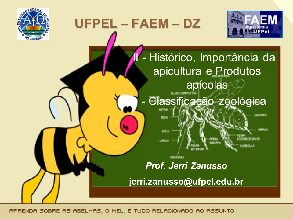 UFPEL – FAEM – DZII - Histórico, Importância da apicultura e Produtos apícolas. - Classificação zoológica.
