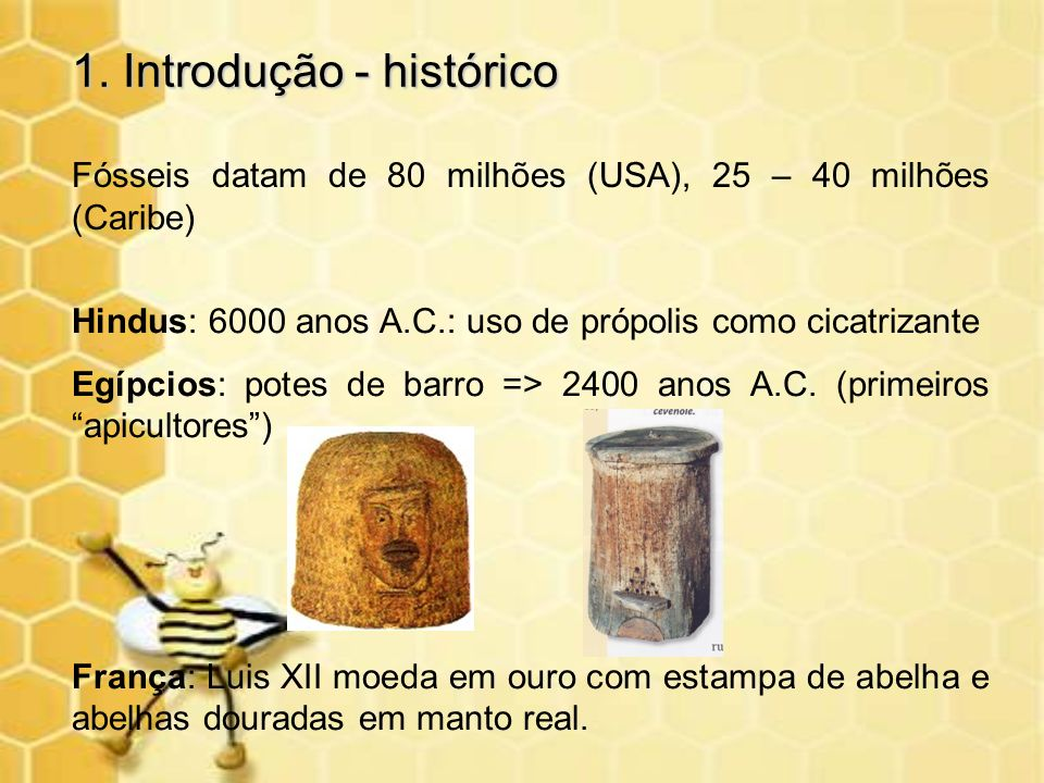 1. Introdução - histórico