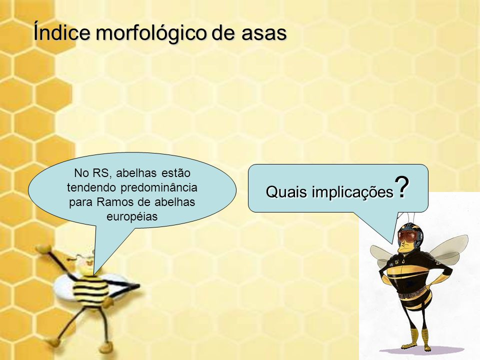 No RS, abelhas estão tendendo predominância para Ramos de abelhas