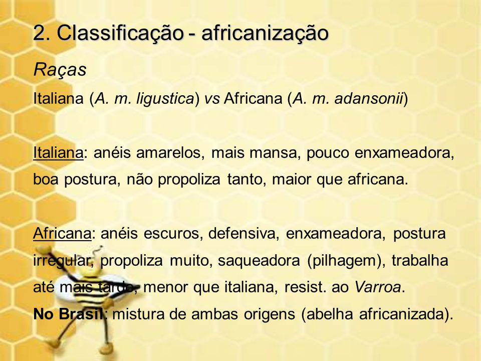 2. Classificação - africanização
