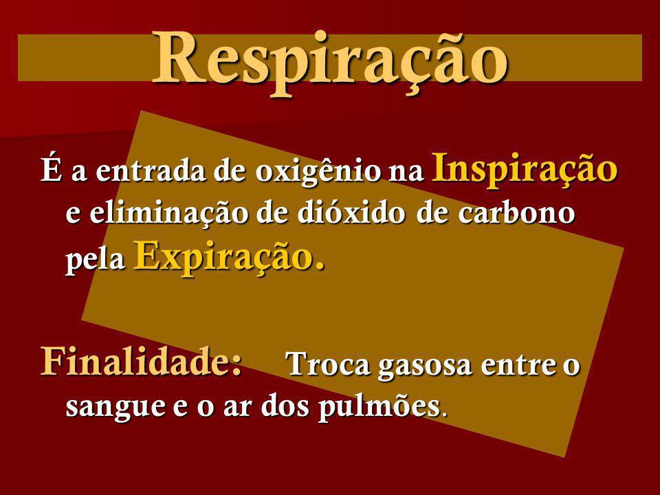 Respiração Finalidade: Troca gasosa entre o sangue e o ar dos pulmões.