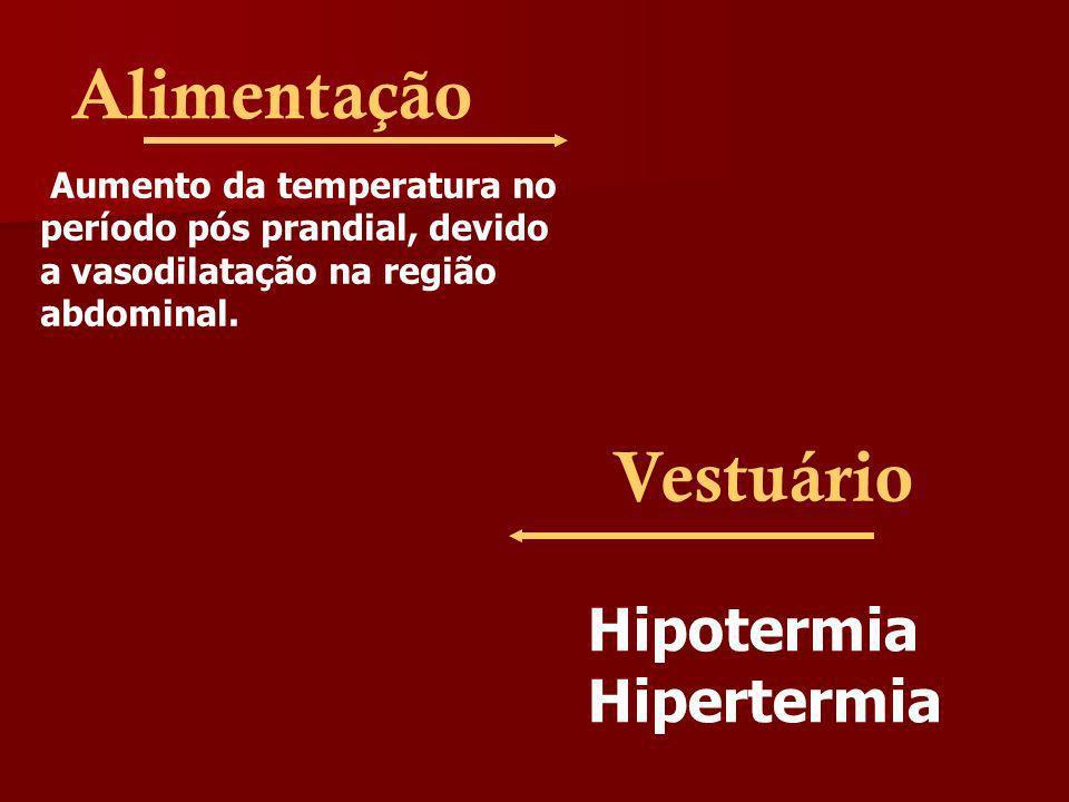 Alimentação Vestuário Hipotermia Hipertermia Aumento da temperatura no
