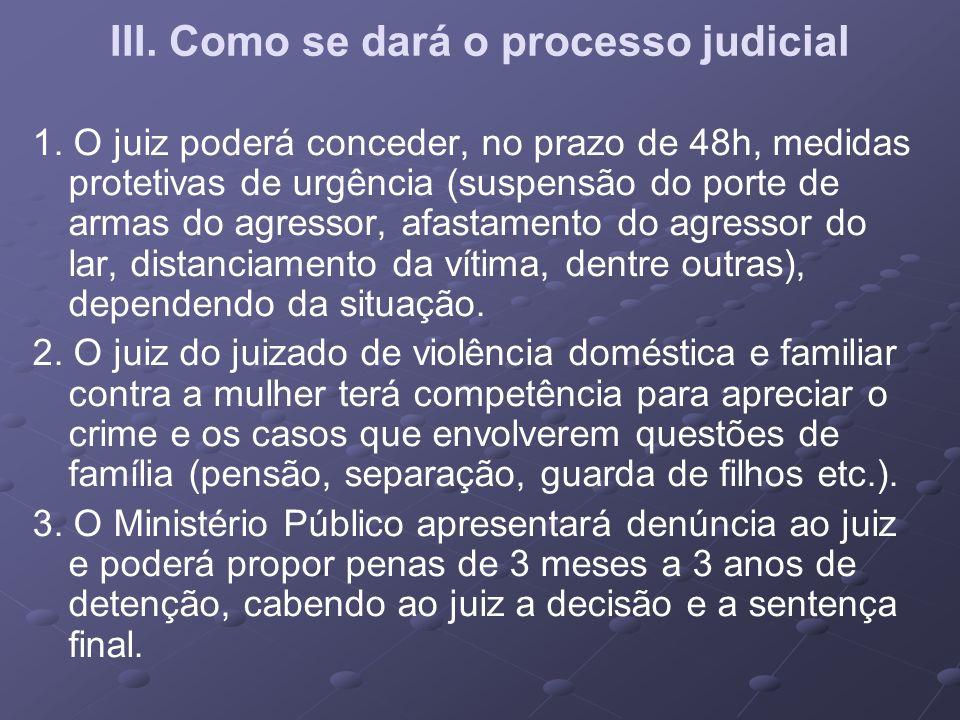 III. Como se dará o processo judicial
