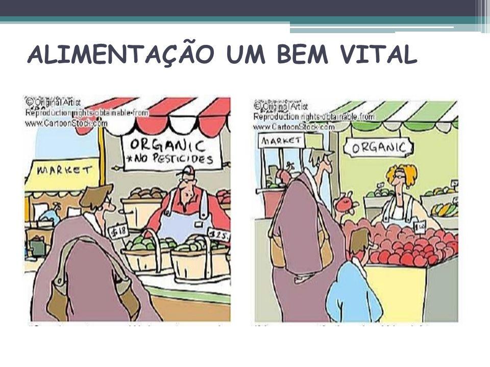 ALIMENTAÇÃO UM BEM VITAL