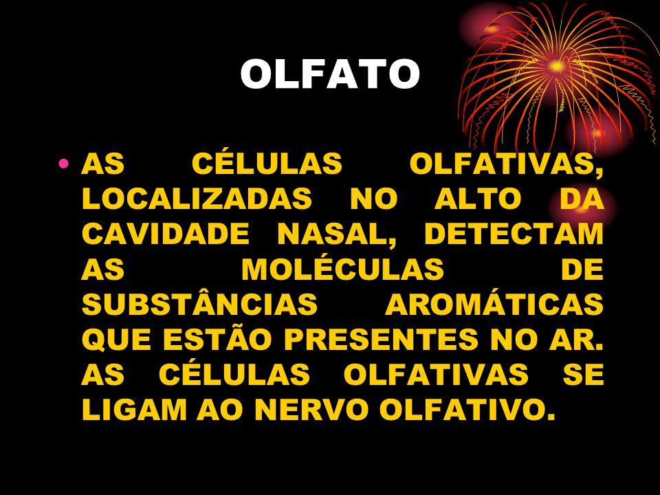 OLFATO