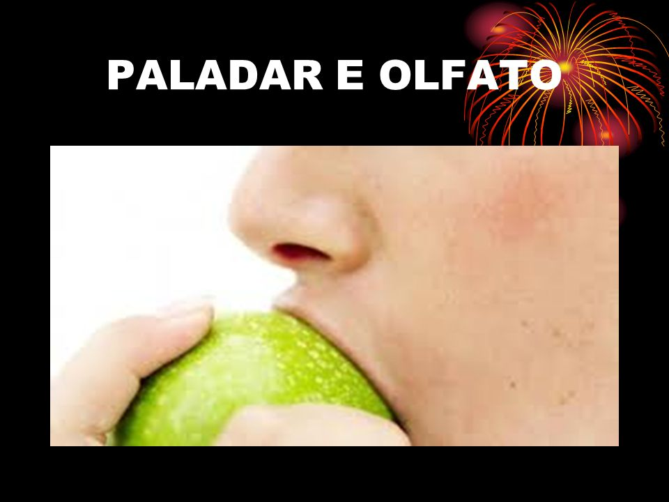PALADAR E OLFATO