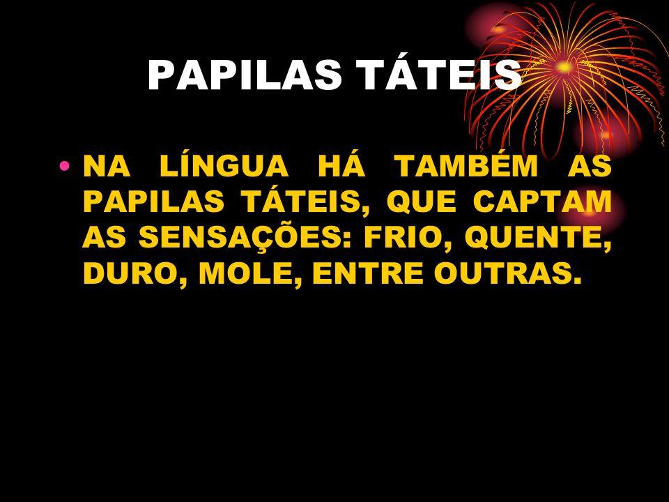 PAPILAS TÁTEIS NA LÍNGUA HÁ TAMBÉM AS PAPILAS TÁTEIS, QUE CAPTAM AS SENSAÇÕES: FRIO, QUENTE, DURO, MOLE, ENTRE OUTRAS.