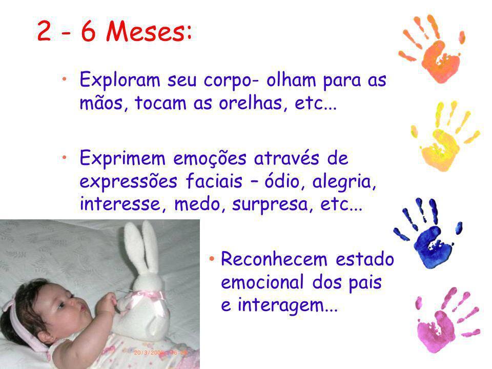 2 - 6 Meses: Exploram seu corpo- olham para as mãos, tocam as orelhas, etc...
