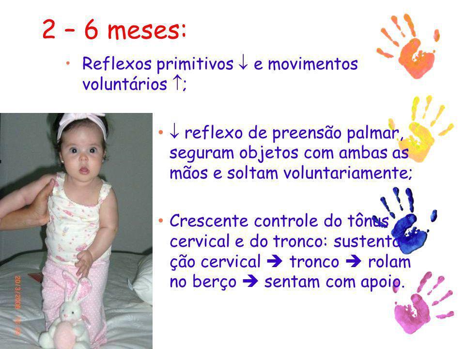 2 – 6 meses: Reflexos primitivos  e movimentos voluntários ;