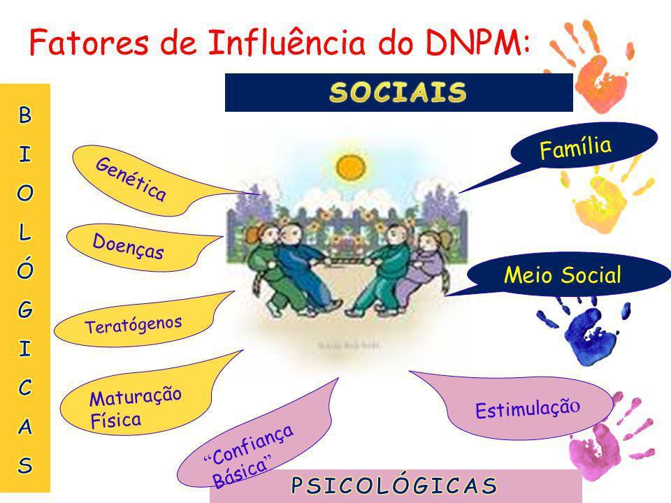 Fatores de Influência do DNPM: