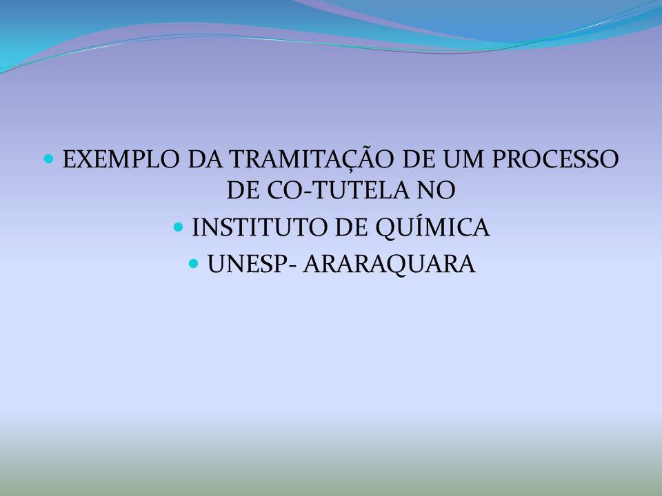 EXEMPLO DA TRAMITAÇÃO DE UM PROCESSO DE CO-TUTELA NO