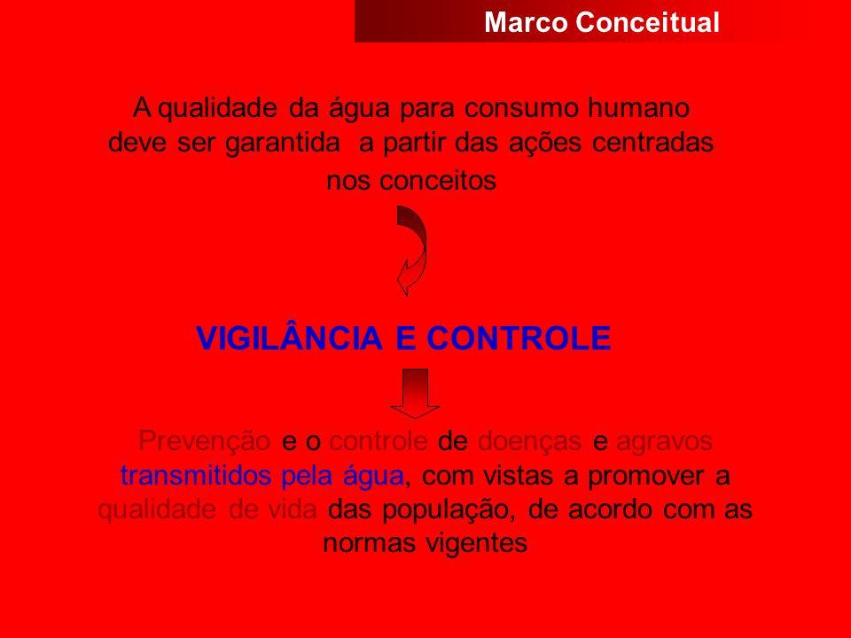 VIGILÂNCIA E CONTROLE Marco Conceitual