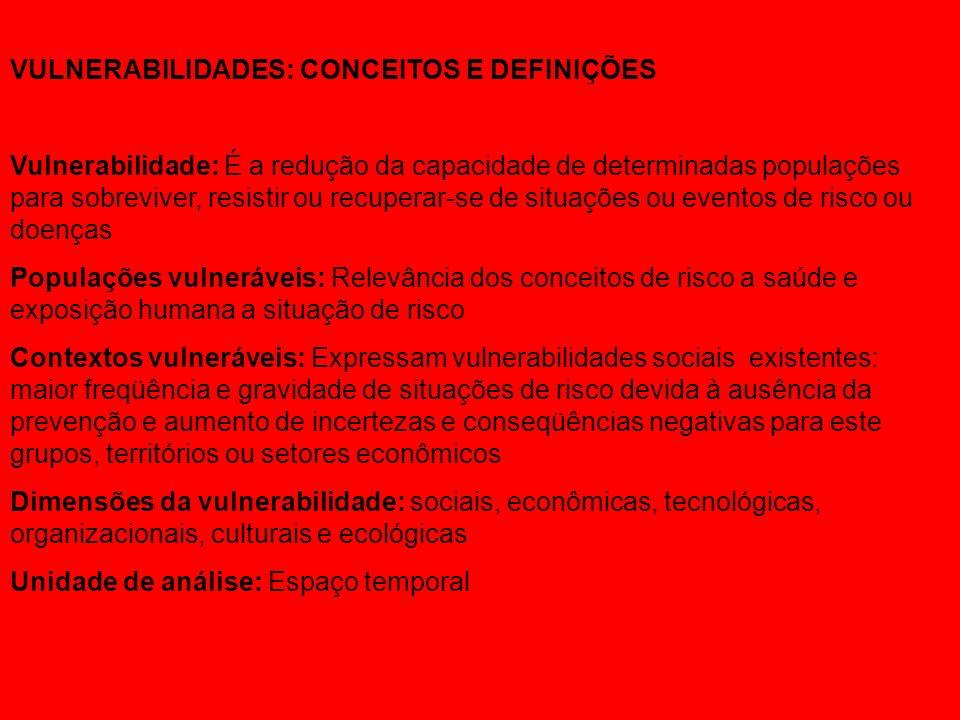 ceitos e Definições VULNERABILIDADES: CONCEITOS E DEFINIÇÕES