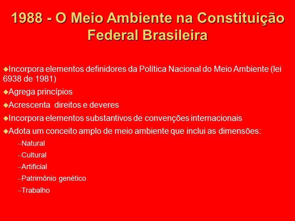 1988 - O Meio Ambiente na Constituição Federal Brasileira