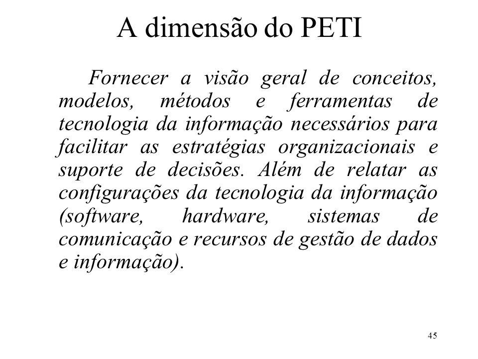A dimensão do PETI