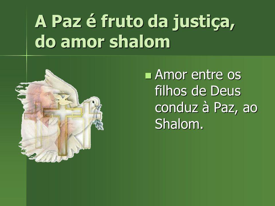 A Paz é fruto da justiça, do amor shalom