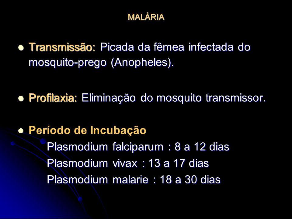 Transmissão: Picada da fêmea infectada do mosquito-prego (Anopheles).
