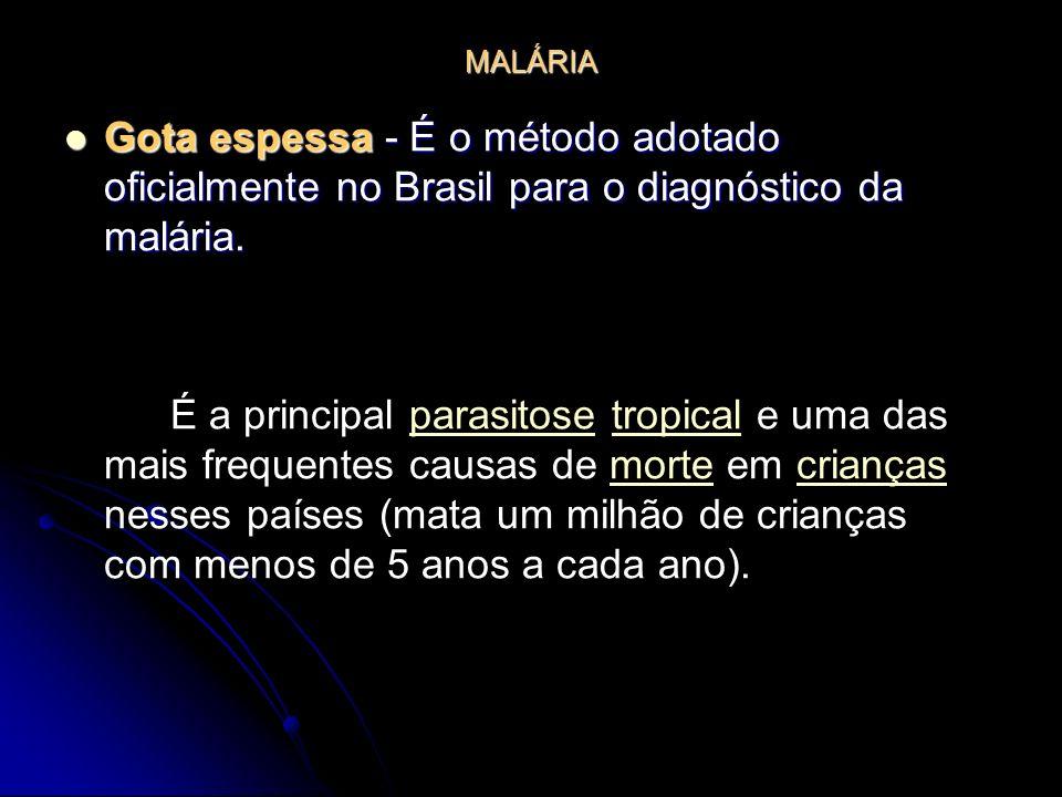 MALÁRIA Gota espessa - É o método adotado oficialmente no Brasil para o diagnóstico da malária.