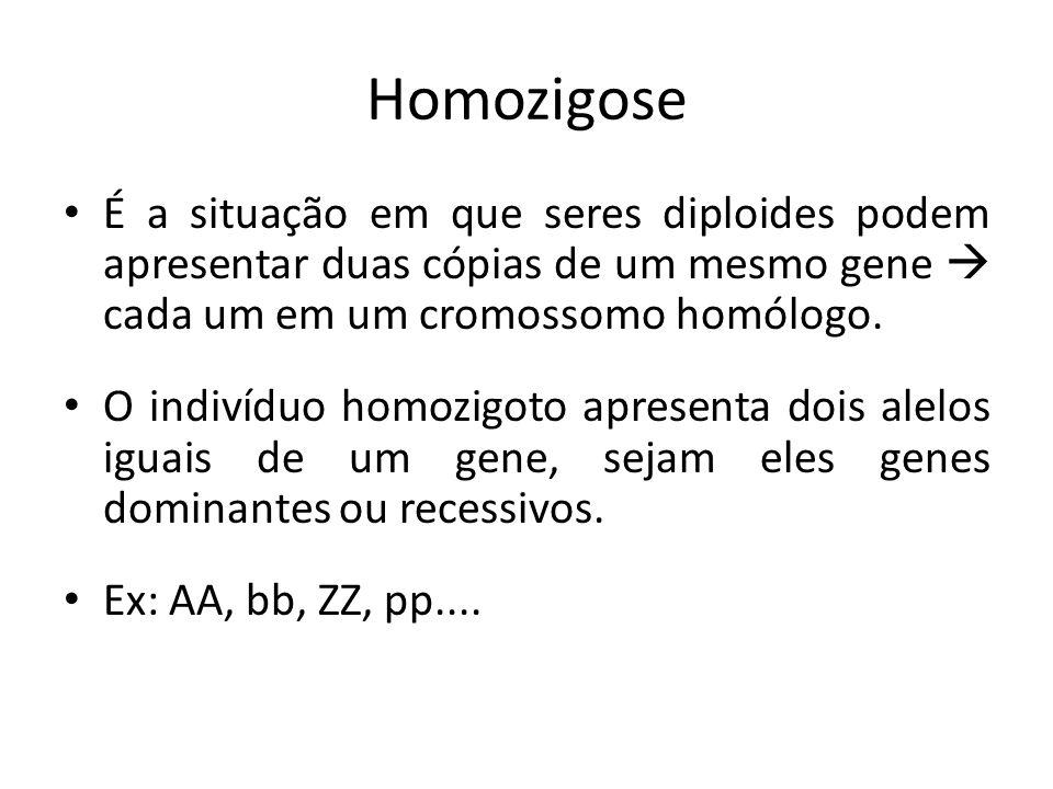 Homozigose É a situação em que seres diploides podem apresentar duas cópias de um mesmo gene  cada um em um cromossomo homólogo.