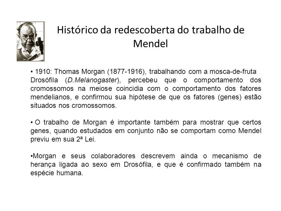 Histórico da redescoberta do trabalho de Mendel
