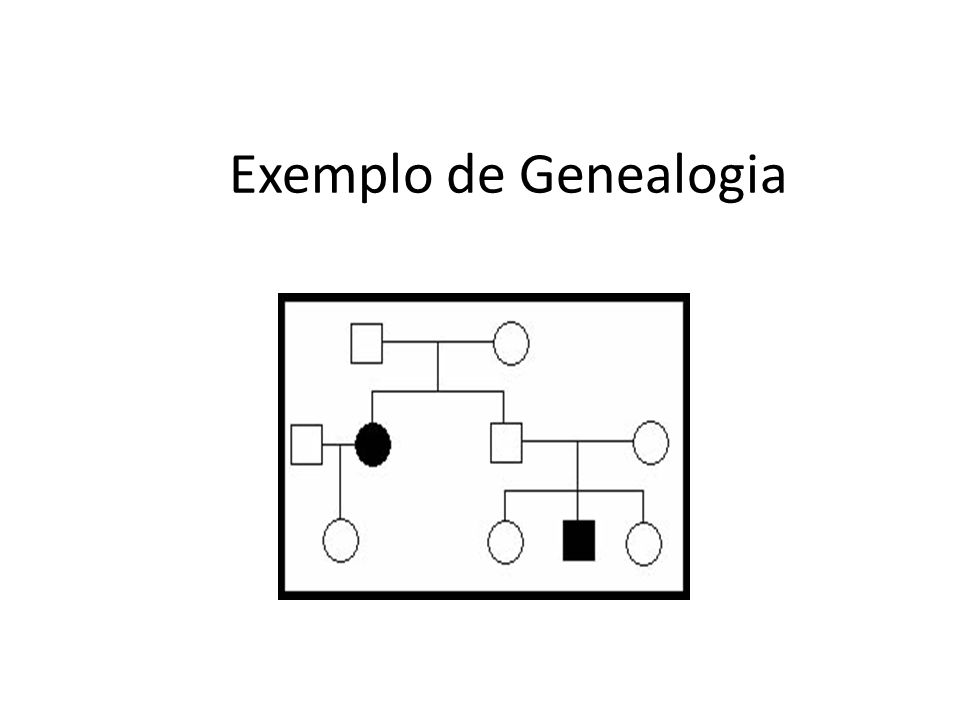 Exemplo de Genealogia