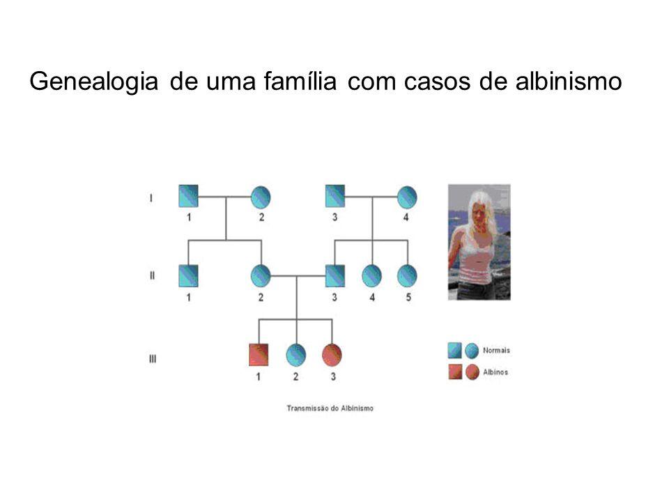Genealogia de uma família com casos de albinismo