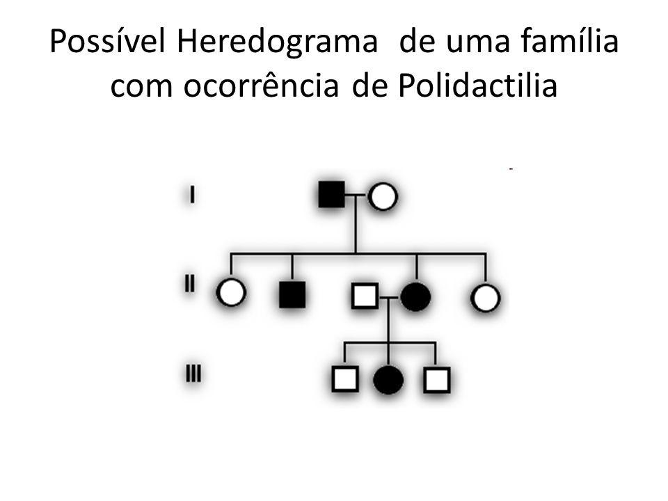 Possível Heredograma de uma família com ocorrência de Polidactilia