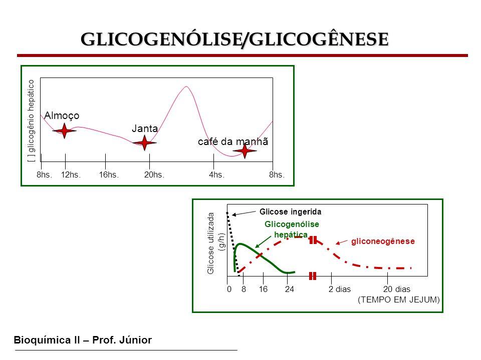 GLICOGENÓLISE/GLICOGÊNESE