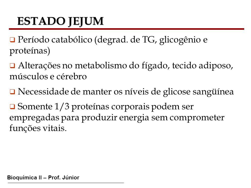 ESTADO JEJUM Período catabólico (degrad. de TG, glicogênio e proteínas) Alterações no metabolismo do fígado, tecido adiposo, músculos e cérebro.