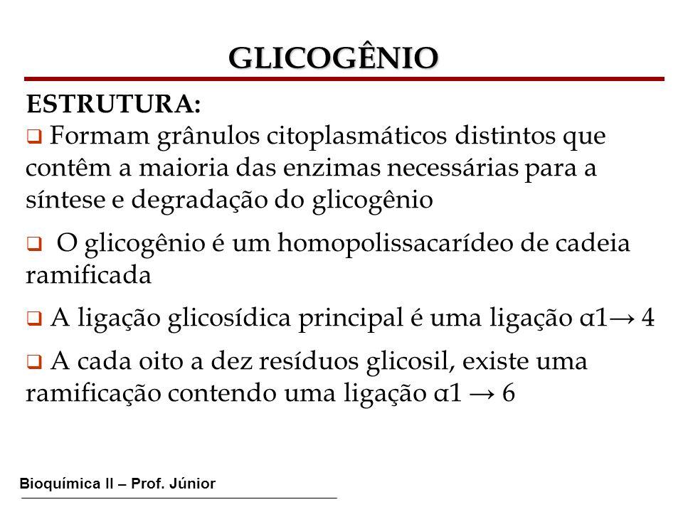 GLICOGÊNIO ESTRUTURA: