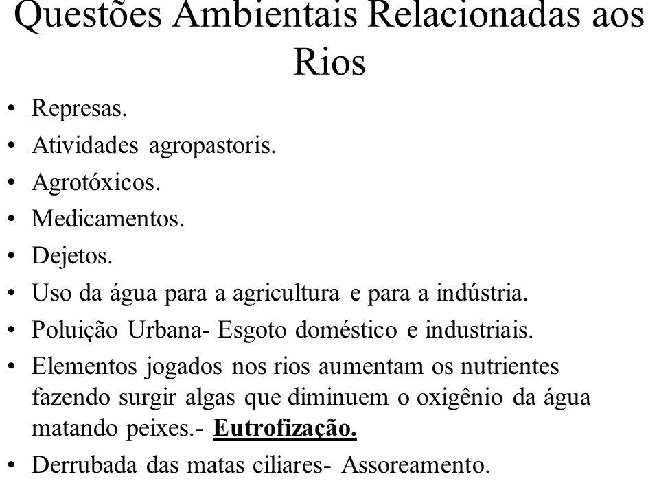 Questões Ambientais Relacionadas aos Rios
